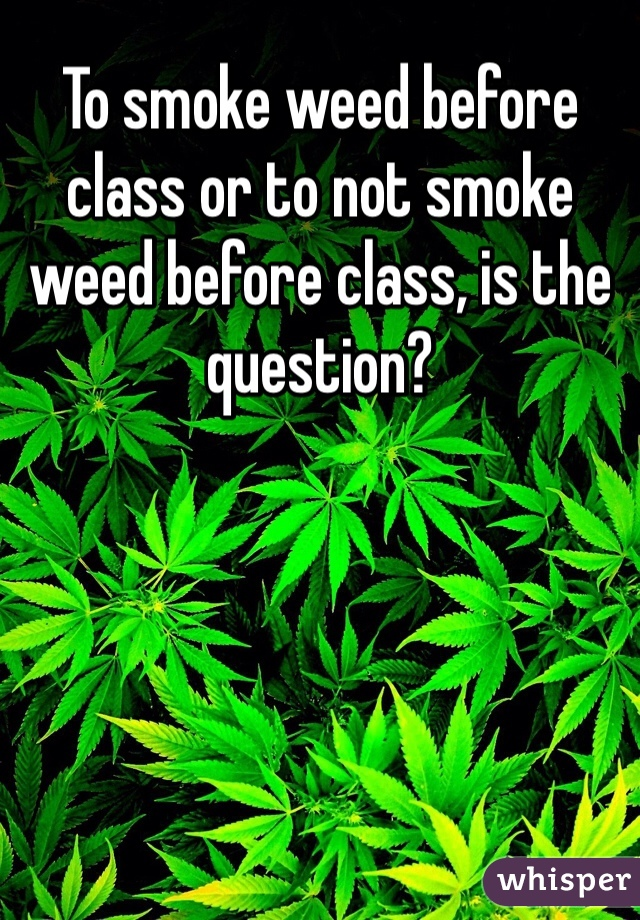 To smoke weed before class or to not smoke weed before class, is the question?