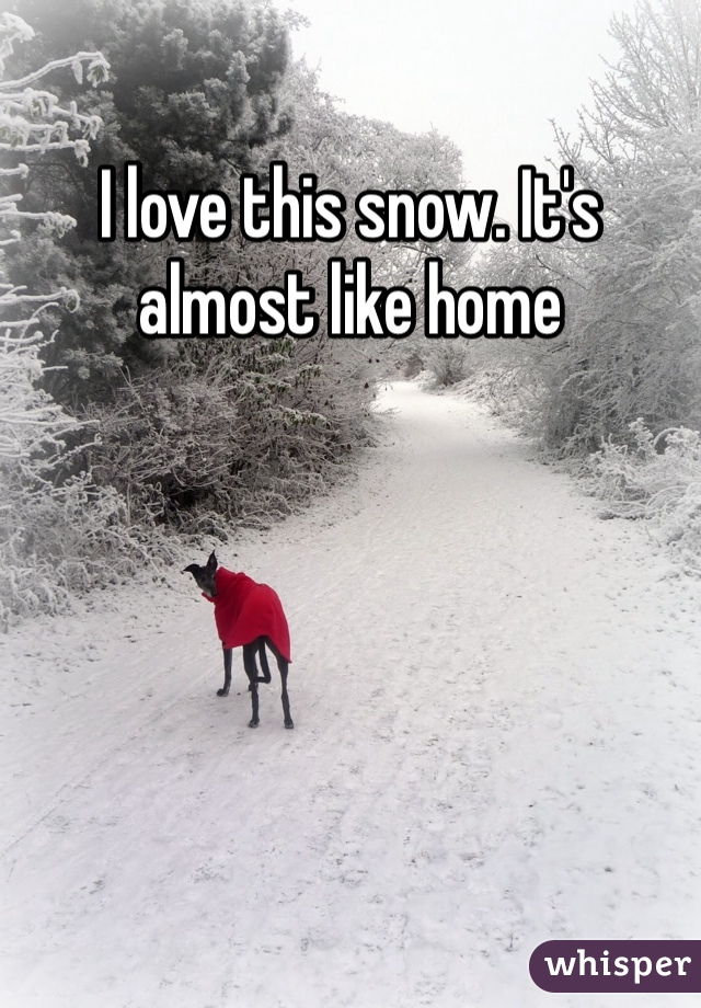 I love this snow. It's almost like home