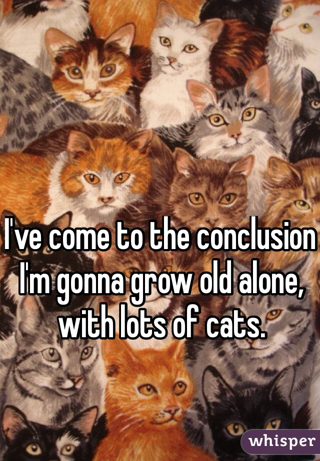 I've come to the conclusion I'm gonna grow old alone, with lots of cats.
