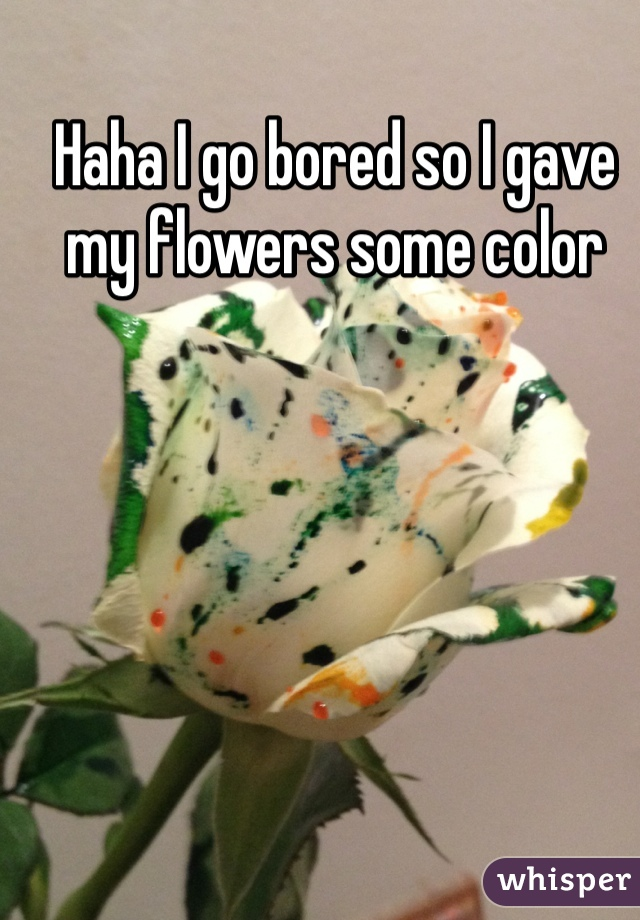Haha I go bored so I gave my flowers some color