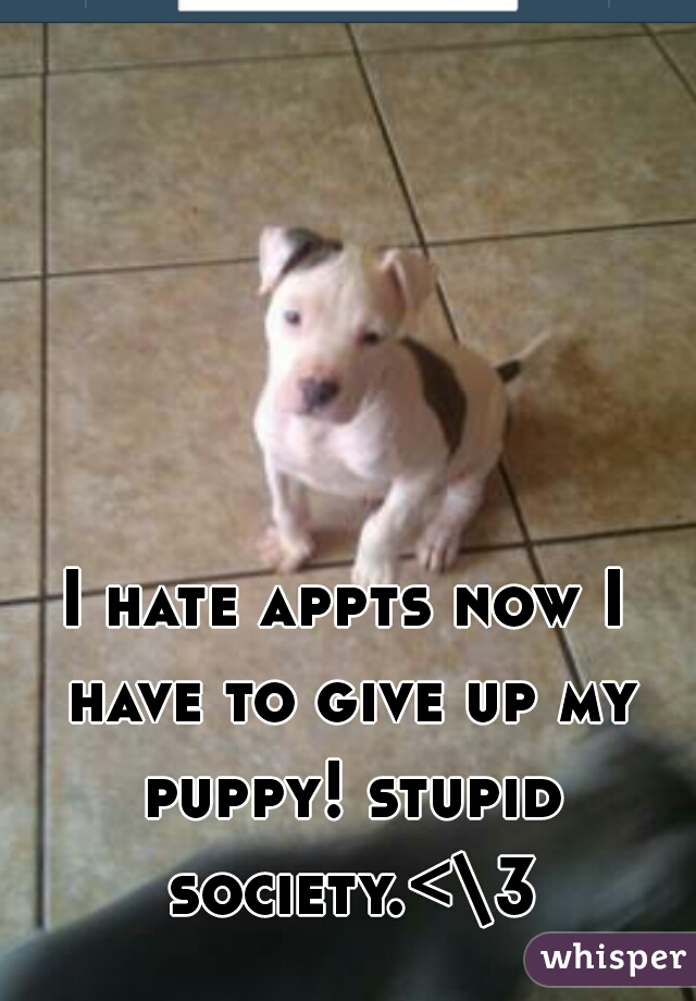 I hate appts now I have to give up my puppy! stupid society.<\3