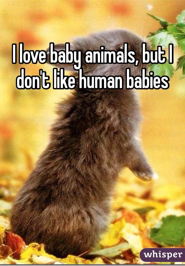 I love baby animals, but I don't like human babies