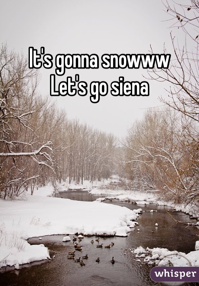 It's gonna snowww Let's go siena