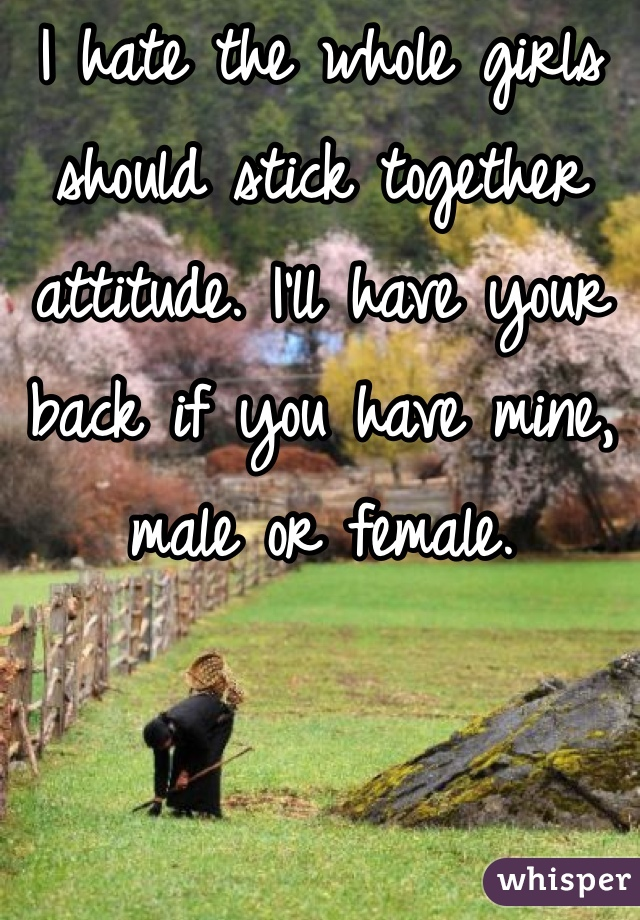 I hate the whole girls should stick together attitude. I'll have your back if you have mine, male or female.