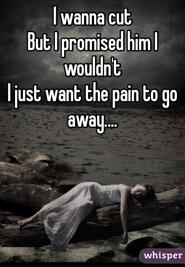 I wanna cut But I promised him I wouldn't  I just want the pain to go away....