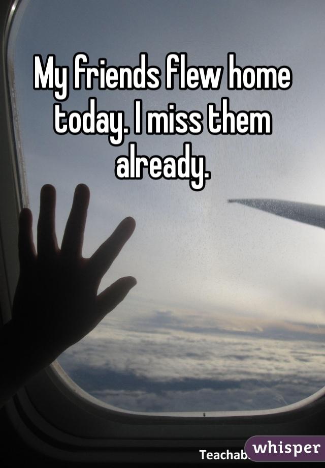 My friends flew home today. I miss them already.