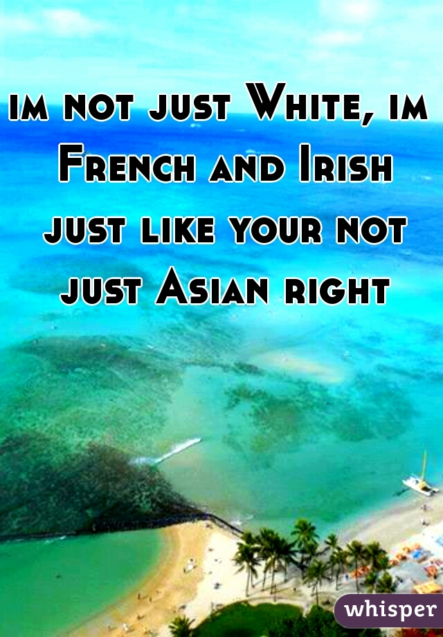 im not just White, im French and Irish just like your not just Asian right