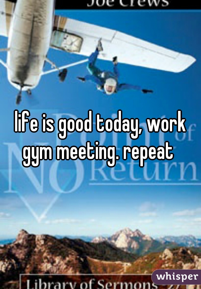 life is good today, work gym meeting. repeat