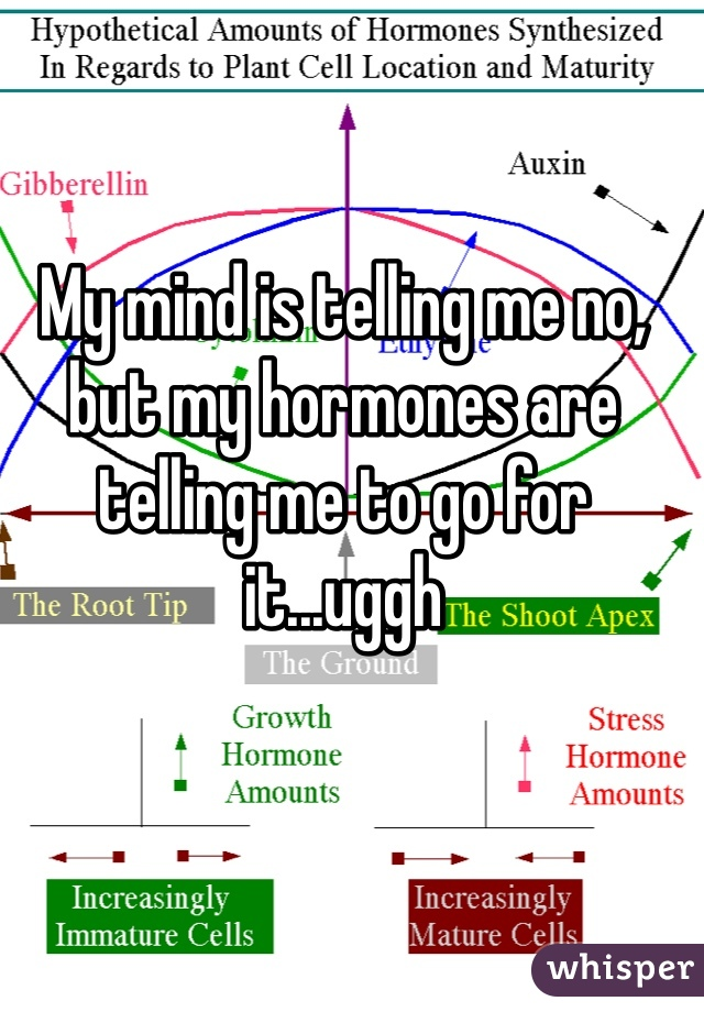 My mind is telling me no, but my hormones are telling me to go for it...uggh