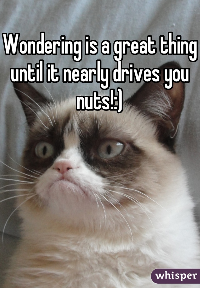 Wondering is a great thing until it nearly drives you nuts!:)