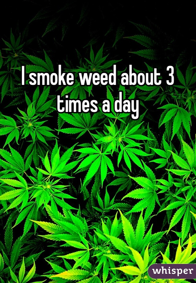 I smoke weed about 3 times a day