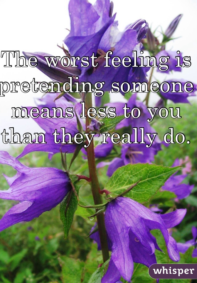 The worst feeling is pretending someone means less to you than they really do.