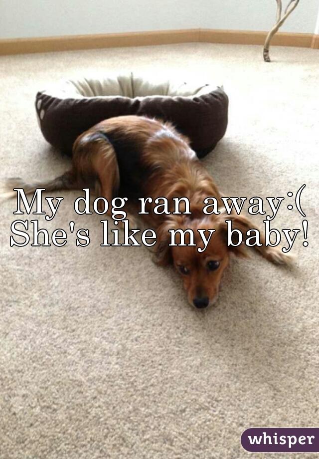 My dog ran away:( She's like my baby!