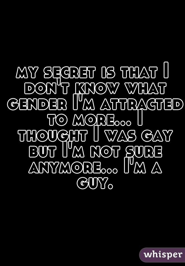 my secret is that I don't know what gender I'm attracted to more... I thought I was gay but I'm not sure anymore... I'm a guy.