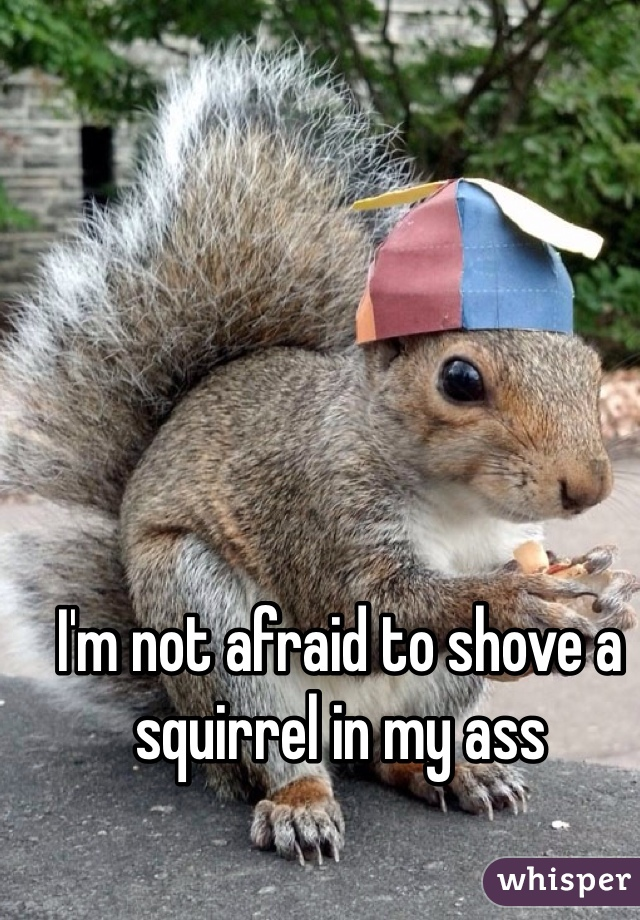 I'm not afraid to shove a squirrel in my ass