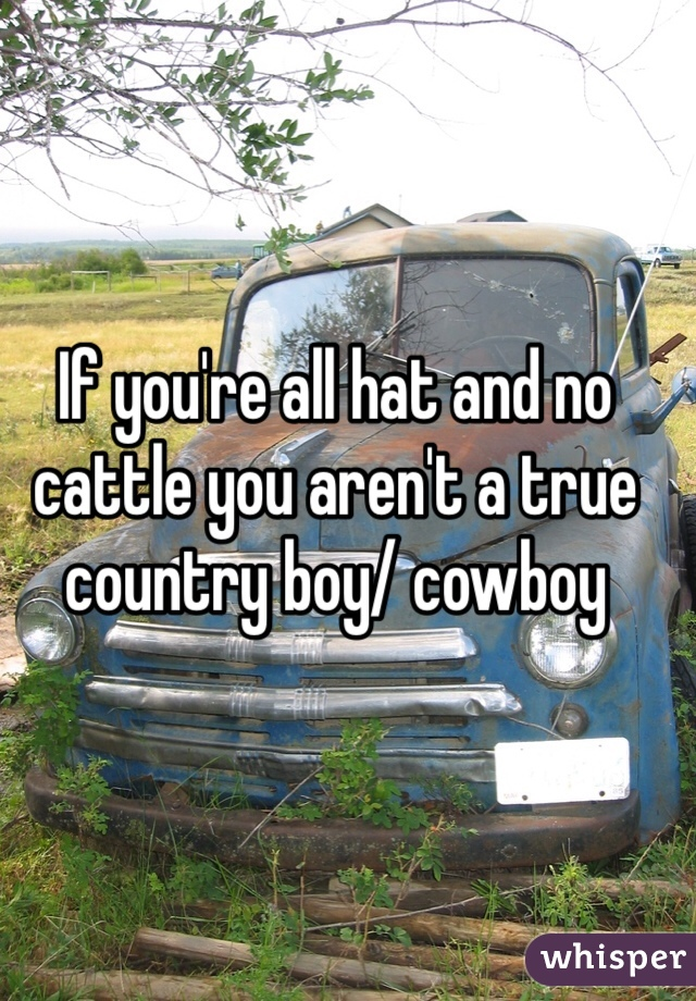 If you're all hat and no cattle you aren't a true country boy/ cowboy
