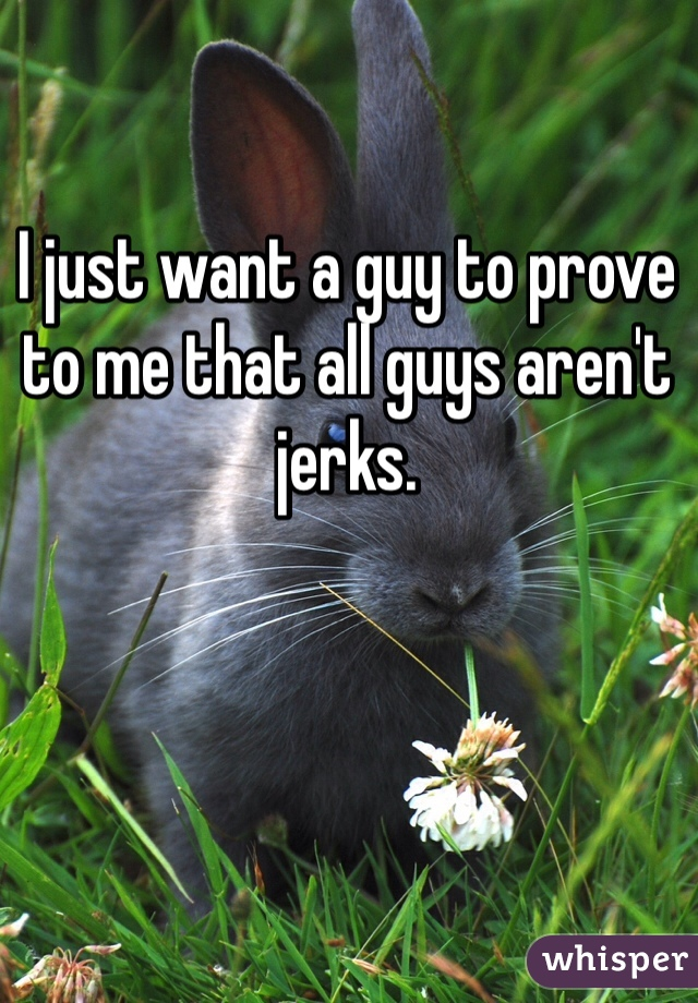 I just want a guy to prove to me that all guys aren't jerks.