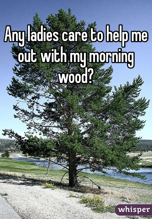 Any ladies care to help me out with my morning wood?