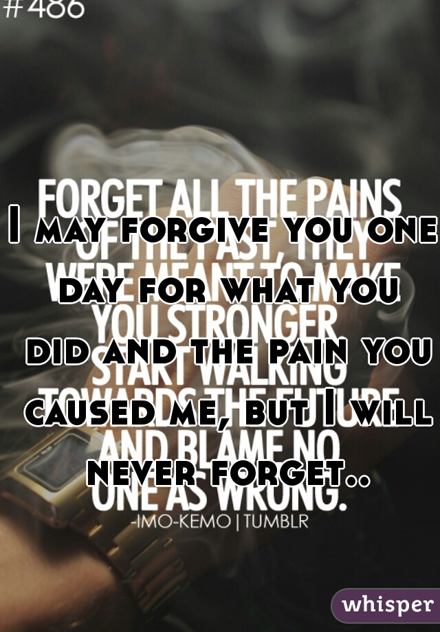 I may forgive you one day for what you did and the pain you caused me, but I will never forget..