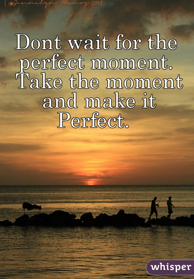 Dont wait for the perfect moment.  Take the moment and make it Perfect.