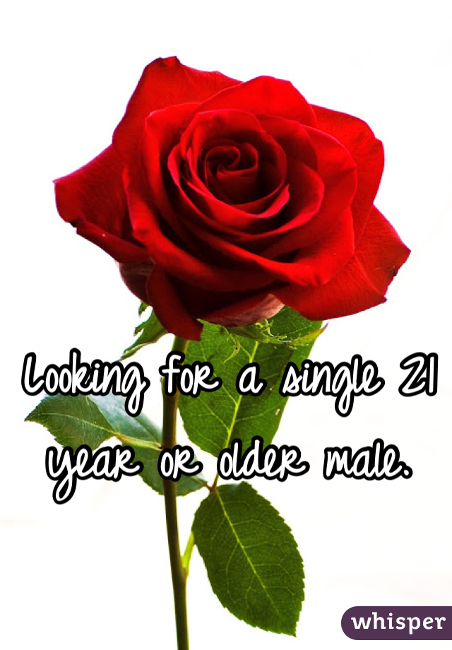 Looking for a single 21 year or older male.