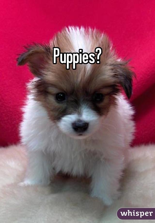 Puppies?