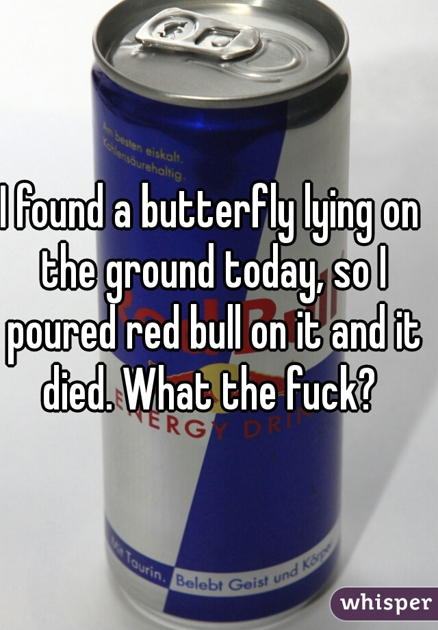 I found a butterfly lying on the ground today, so I poured red bull on it and it died. What the fuck?