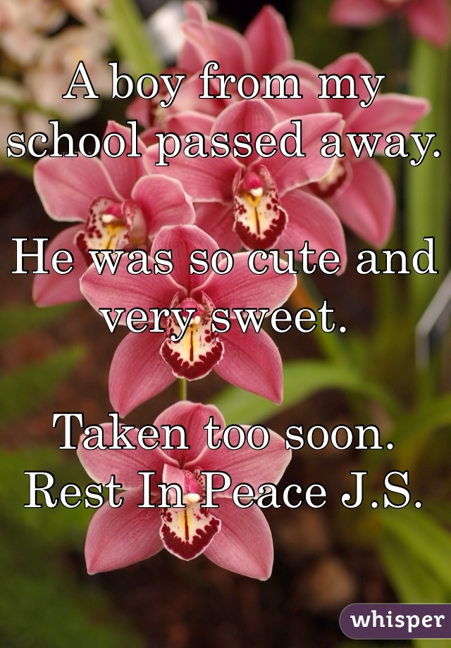 A boy from my school passed away.  He was so cute and very sweet.  Taken too soon. Rest In Peace J.S.