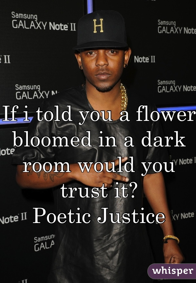 If i told you a flower bloomed in a dark room would you trust it?  Poetic Justice