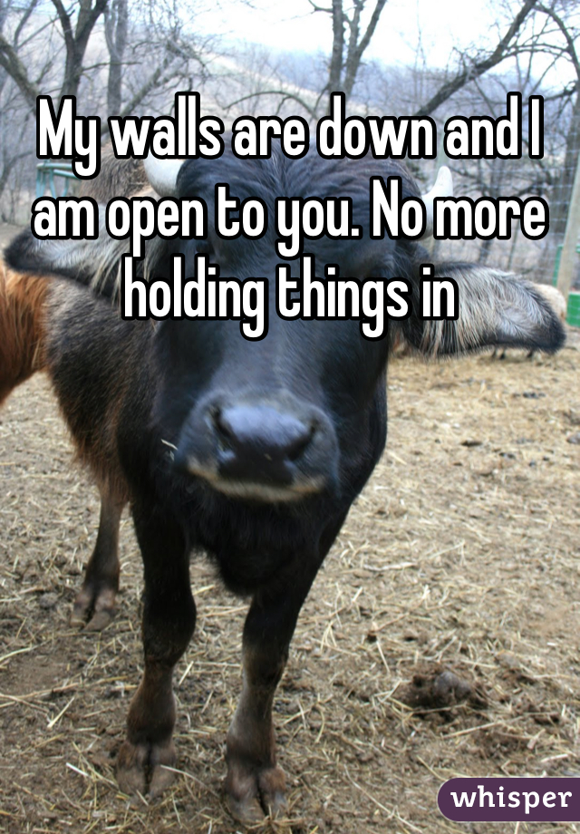 My walls are down and I am open to you. No more holding things in
