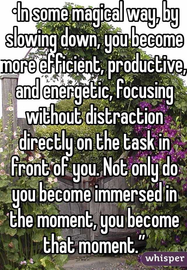 """•In some magical way, by slowing down, you become more efficient, productive, and energetic, focusing without distraction directly on the task in front of you. Not only do you become immersed in the moment, you become that moment."""""""
