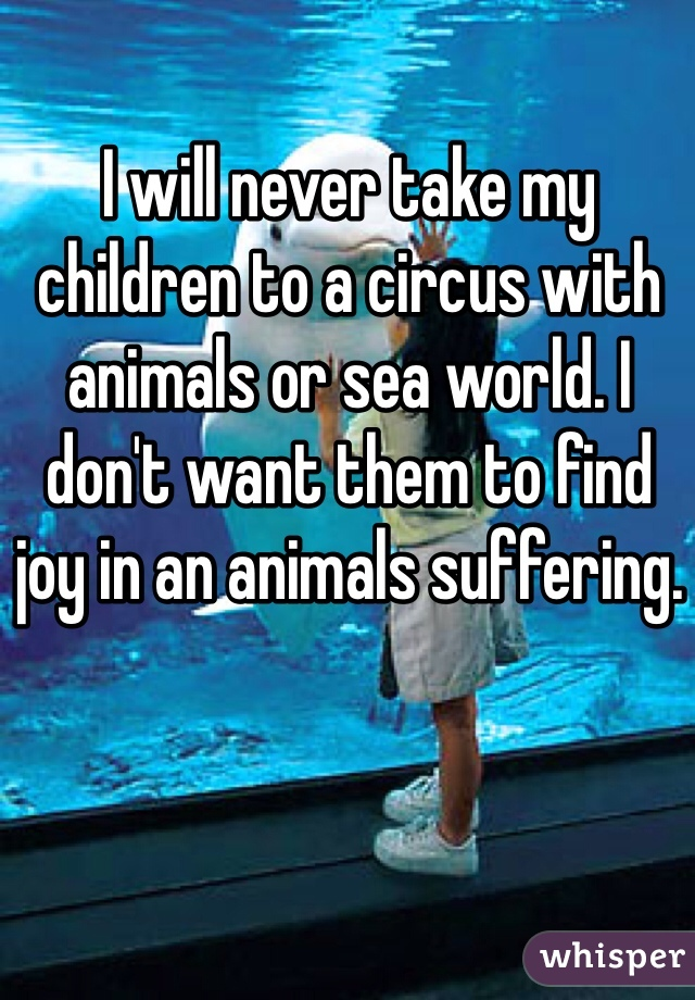 I will never take my children to a circus with animals or sea world. I don't want them to find joy in an animals suffering.