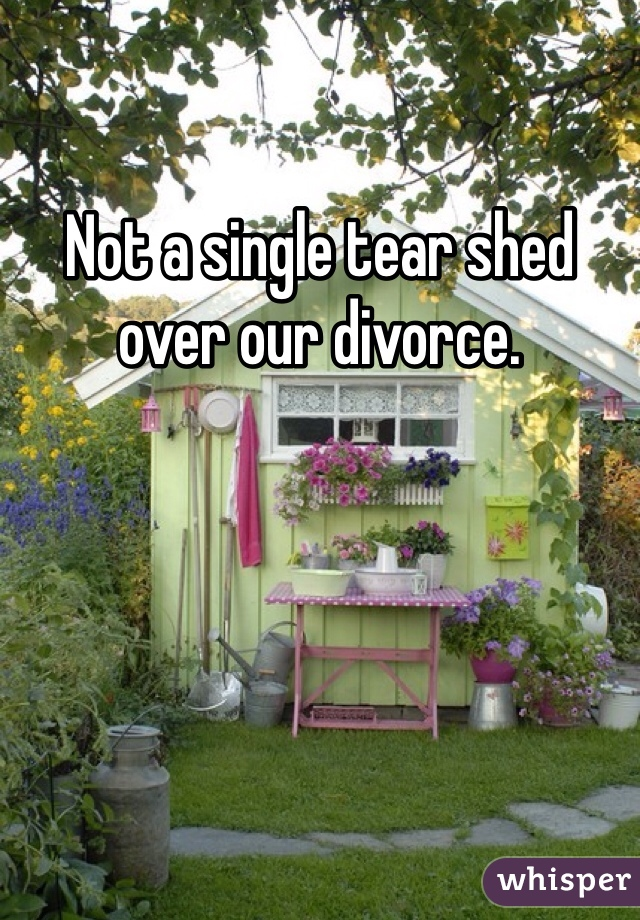 Not a single tear shed over our divorce.