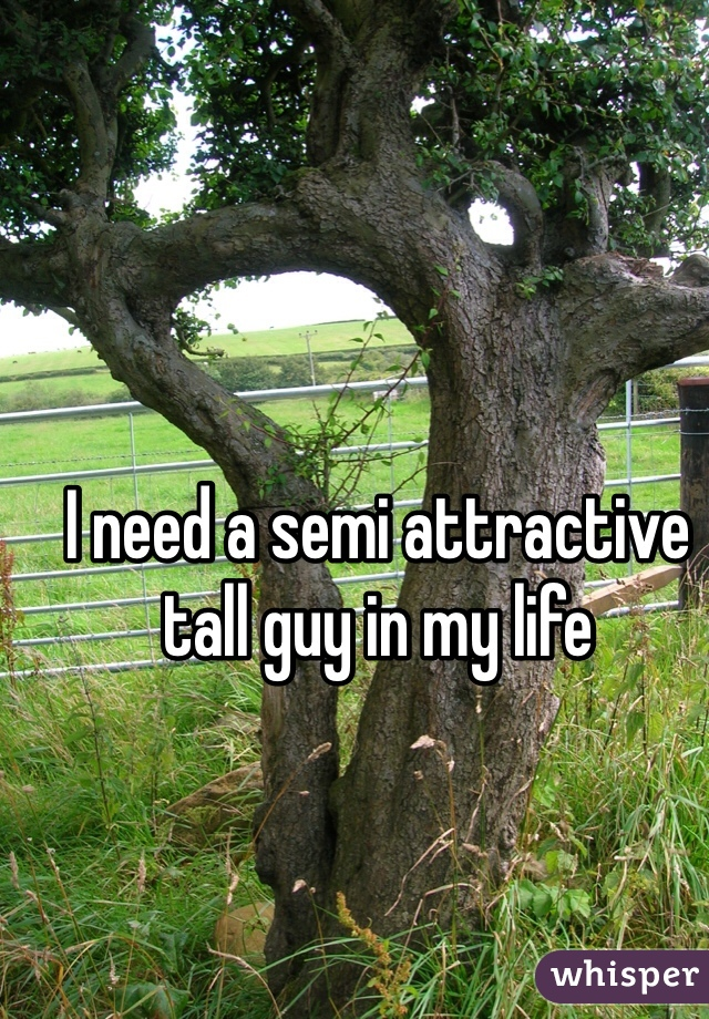 I need a semi attractive tall guy in my life