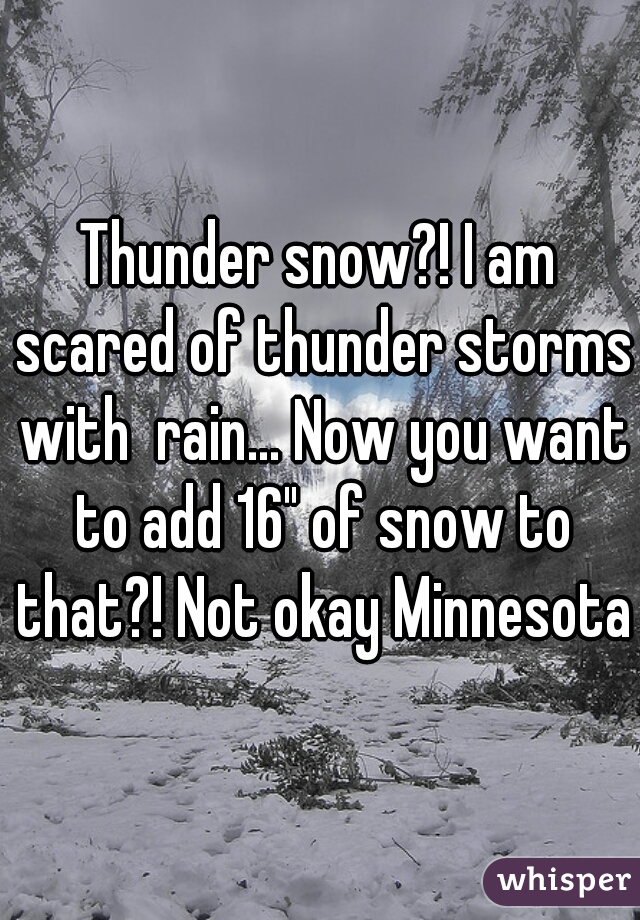 """Thunder snow?! I am scared of thunder storms with  rain... Now you want to add 16"""" of snow to that?! Not okay Minnesota!"""