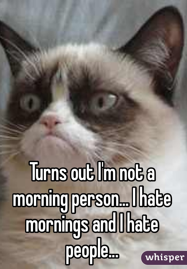 Turns out I'm not a morning person... I hate mornings and I hate people...
