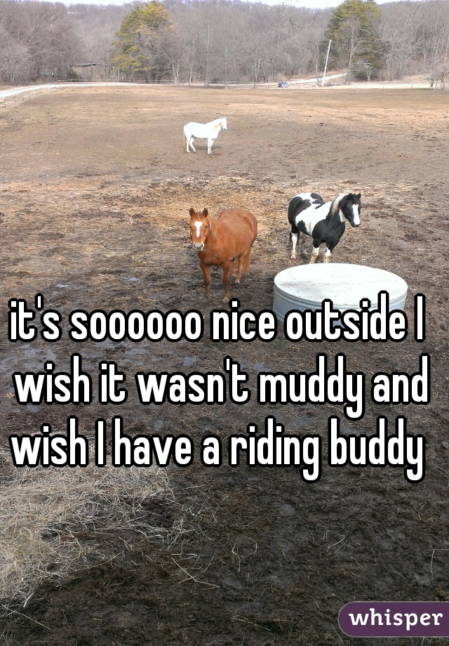 it's soooooo nice outside I wish it wasn't muddy and wish I have a riding buddy