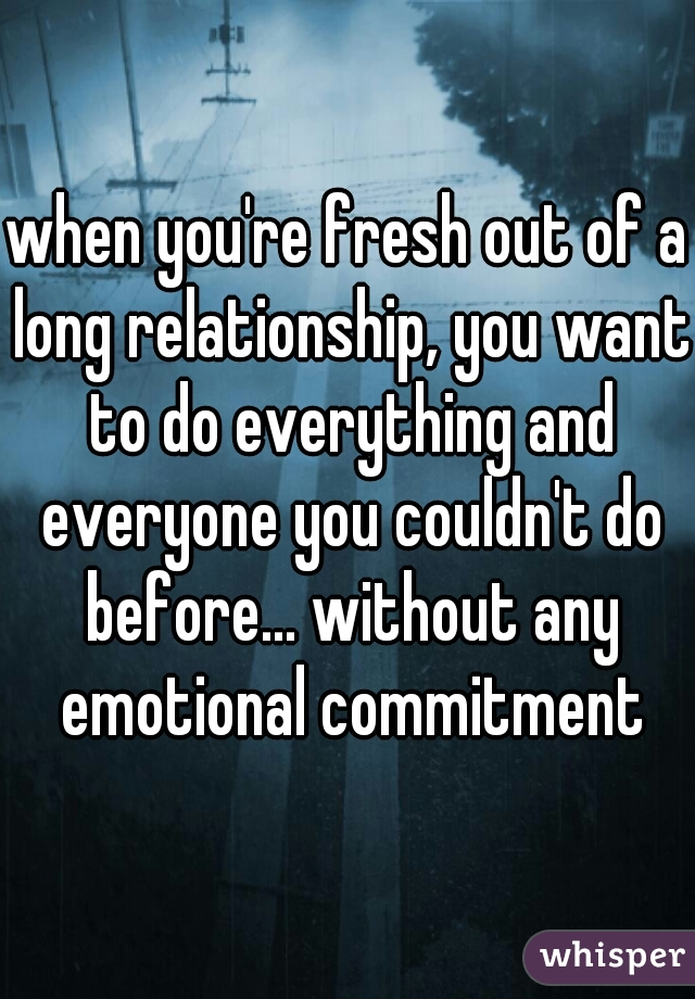 when you're fresh out of a long relationship, you want to do everything and everyone you couldn't do before... without any emotional commitment
