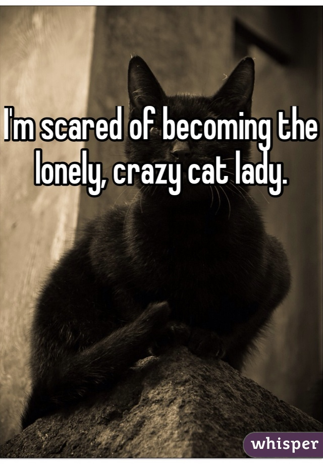I'm scared of becoming the lonely, crazy cat lady.