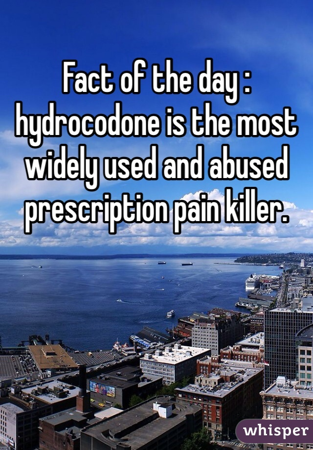 Fact of the day : hydrocodone is the most widely used and abused prescription pain killer.