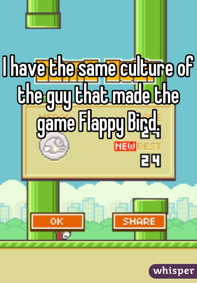 I have the same culture of the guy that made the game Flappy Bird.