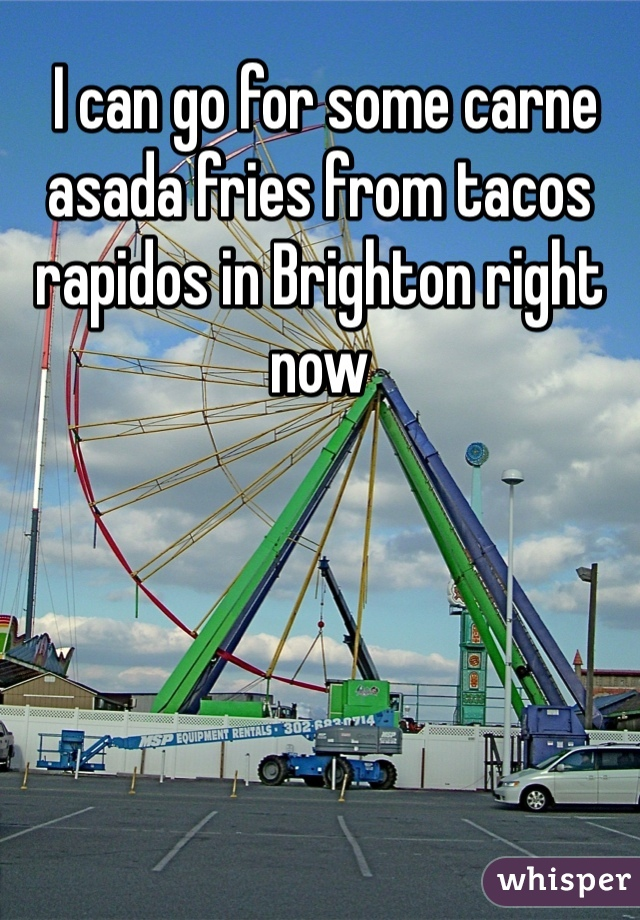 I can go for some carne asada fries from tacos rapidos in Brighton right now