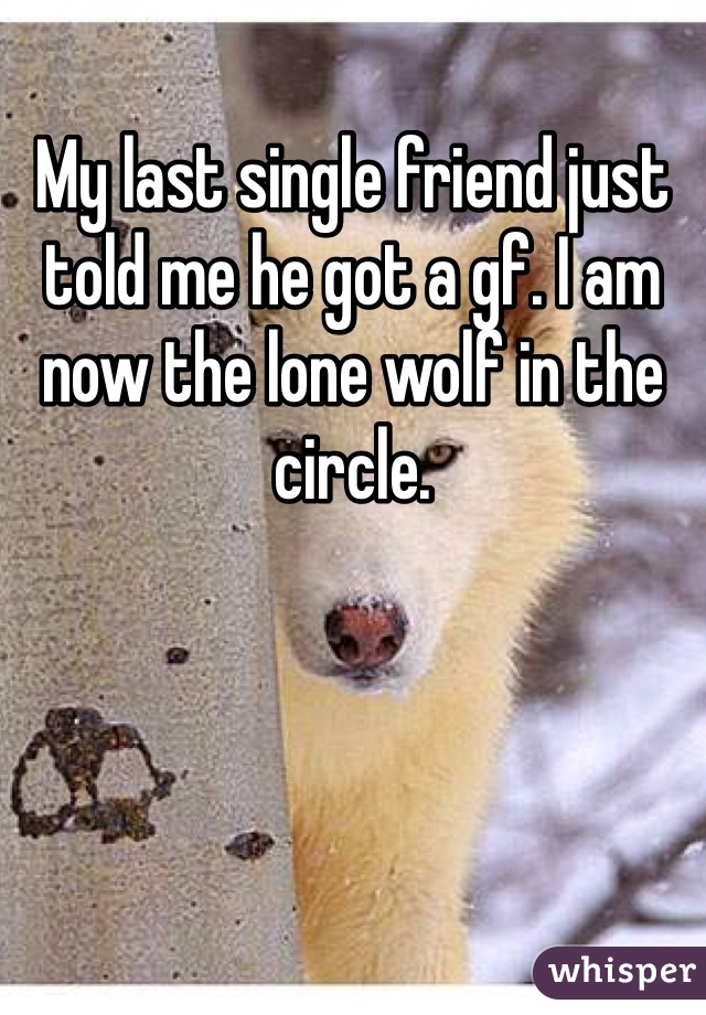 My last single friend just told me he got a gf. I am now the lone wolf in the circle.