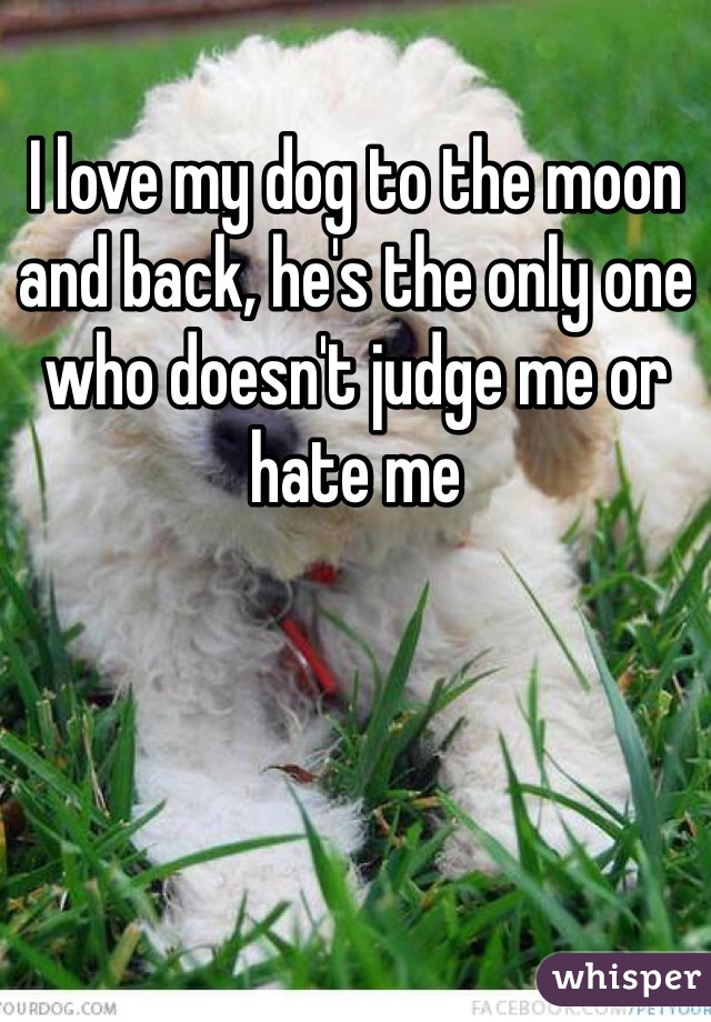 I love my dog to the moon and back, he's the only one who doesn't judge me or hate me