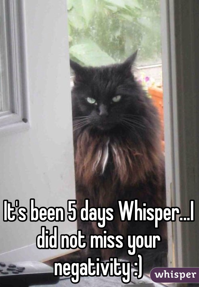 It's been 5 days Whisper...I did not miss your negativity :)