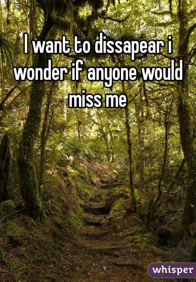 I want to dissapear i wonder if anyone would miss me