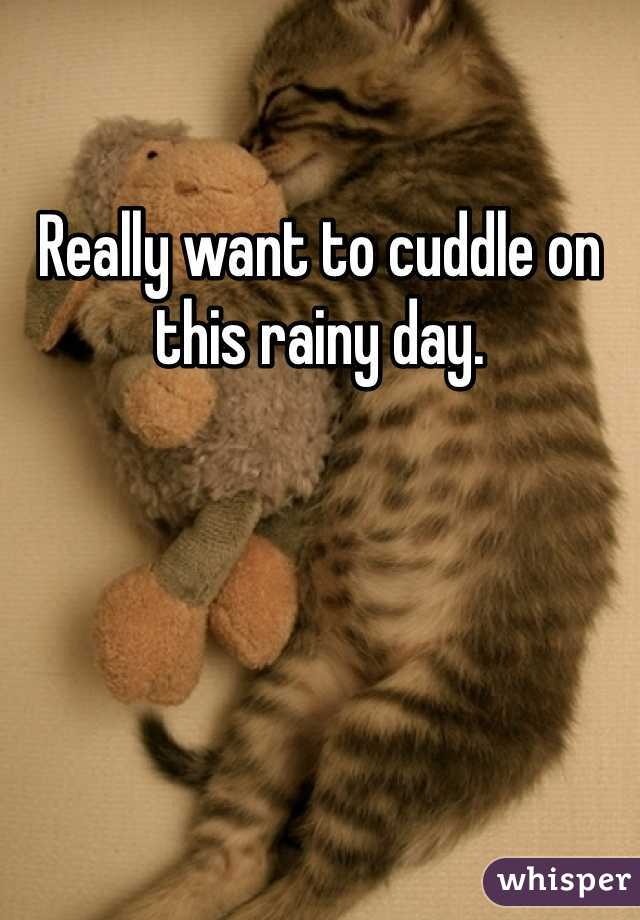 Really want to cuddle on this rainy day.