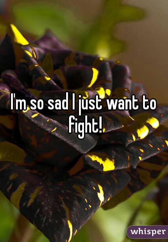 I'm so sad I just want to fight!