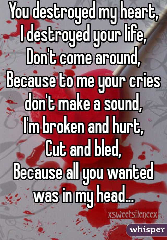 You destroyed my heart, I destroyed your life,  Don't come around, Because to me your cries don't make a sound, I'm broken and hurt, Cut and bled, Because all you wanted was in my head...