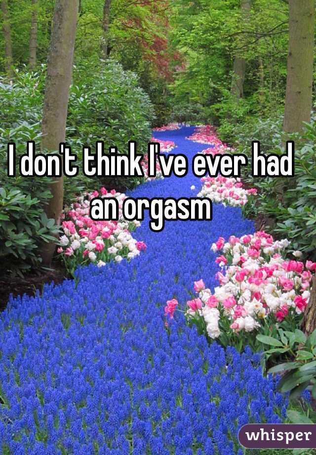 I don't think I've ever had an orgasm